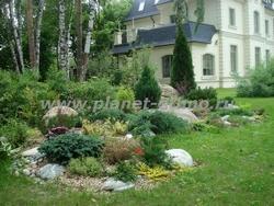 альпинарий на садовом участке – общий вид