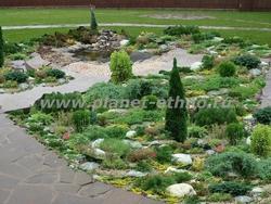 альпинарий на садовом участке