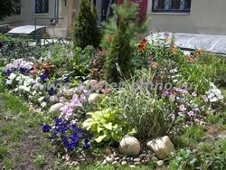 устройство цветников - комбинированная клумба из однолетних и многолетних растений