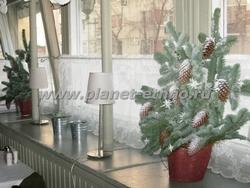 флористика – композиции новогодней тематики (упрощенная стилизация под дачную веранду середины ХХ века)