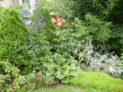 услуги по уходу за растениями на садовых участках